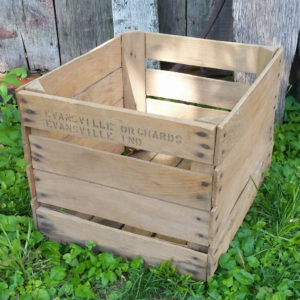 Crate Cropped